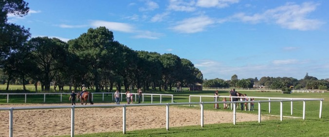 This is Centennial Park.  You can even ride horses here, in urban Sydney!